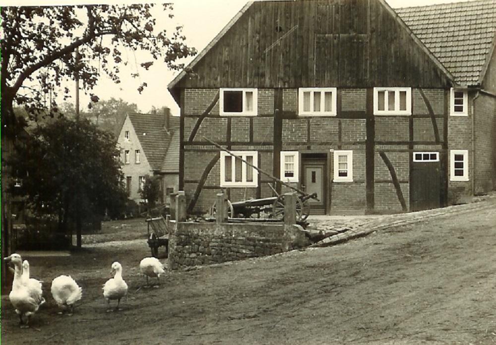 02_22 Clemens Weber_1 (Schweins)