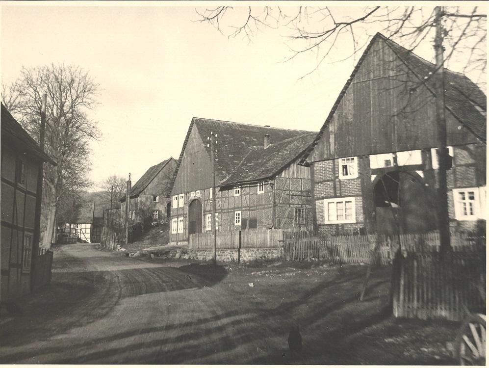 02_57 Meise Udo Buch) Steckers (Dreikluft)
