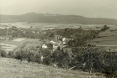 01_08 Boedexen um 1960